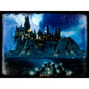 Harry Potter Hogwarts Prime 3D puzzle 500pcs