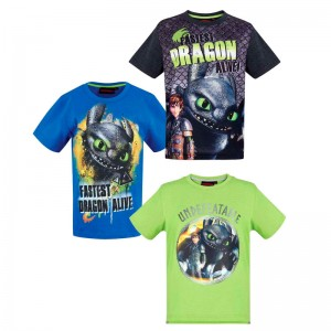 How to train your Dragon assorted tshirt