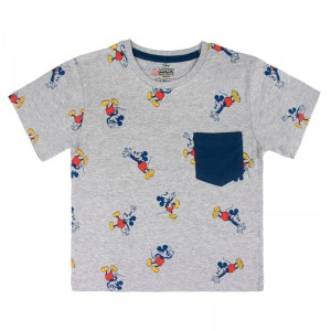 Disney Mickey premium t-shirt