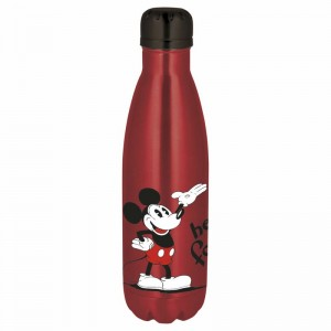 Disney Mickey stainless steel bottle