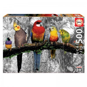 Birds in the Jungle puzzle 500pcs
