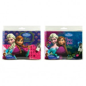 Diney Frozen diary